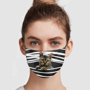 Tabby Cat Stripes Face Mask